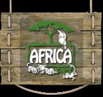 pet-shop-africa-pet-em-perdizes-bairro-banho-tosa-caes-cachorros