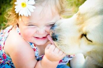 beijar-os-cachorros-lambida-faz-bem-mal-sistema-imunologico-saude-doencas