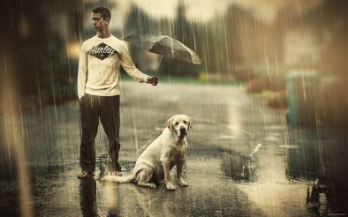 chuva-passeios-dicas-cuidados-posso-passear-caes-cachorros-okamix-com-br-sao-paulo-sp
