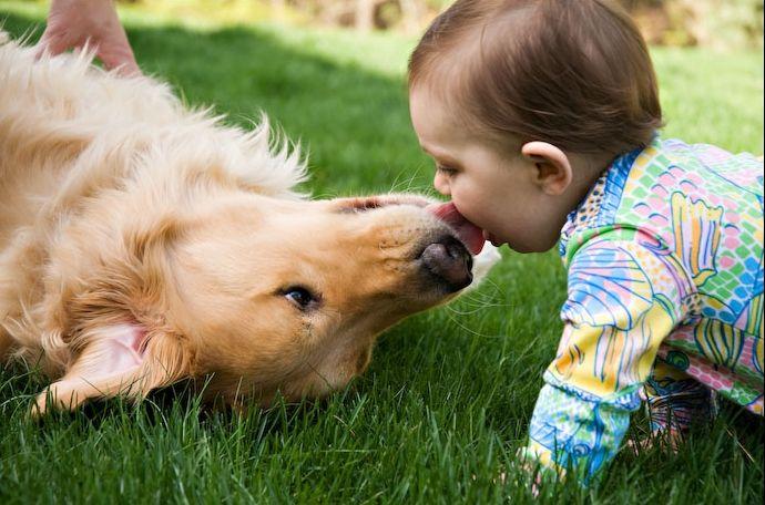 fotos-imagens-beijando-cachorro-bebe-crianca