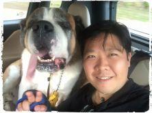 adestramento-adestrador-cachorro-sao-bernardo