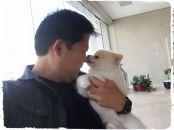 adestramento-adestrador-cachorro-splitz-alemao