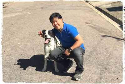 adestramento-cachorro-vira-lat