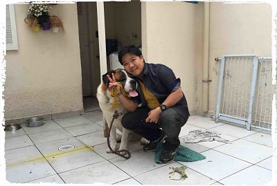 adestramento-de-cachorro-raca-sao-bernardo1