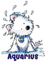 cao-cachorro-caes-signo-aquario-horoscopo-caracteristicas-imagens