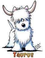 cao-cachorros-caes-signo-touro-horoscopo-caracteristicas-imagens