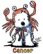 cao-caes-cachorros-signo-cancer-horoscopo-caracteristicas-imagens