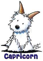 cao-caes-cachorros-signo-capricornio-horoscopo-caracteristicas-imagens