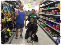 consultoria-comportamental-cachorro-familia
