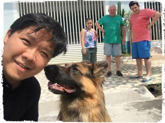 consultoria-comportamento-cachorros-raca