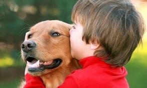 crianca-conversando-brincando-cachorro-cao-fotos-imagens