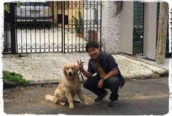 dog-walker-em-sp1