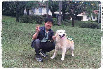 fotos-adestramento-golden-retriever-labrador1