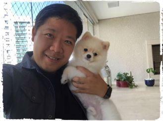fotos-imagens-cachorro-splitz-alemao