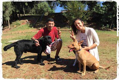 fotos-passeios-caes-cachorros-parque1