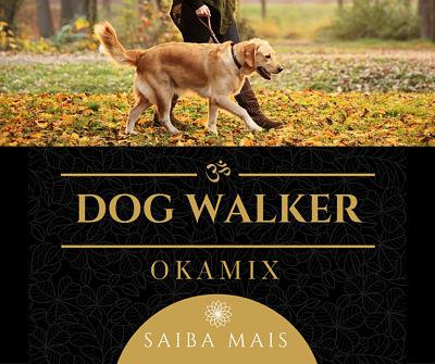 fotos-imagens-dog-walker-passeadores