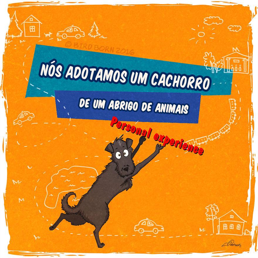 historia-de-cachorro-1
