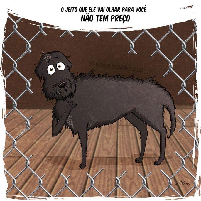 historia-de-cachorro-11