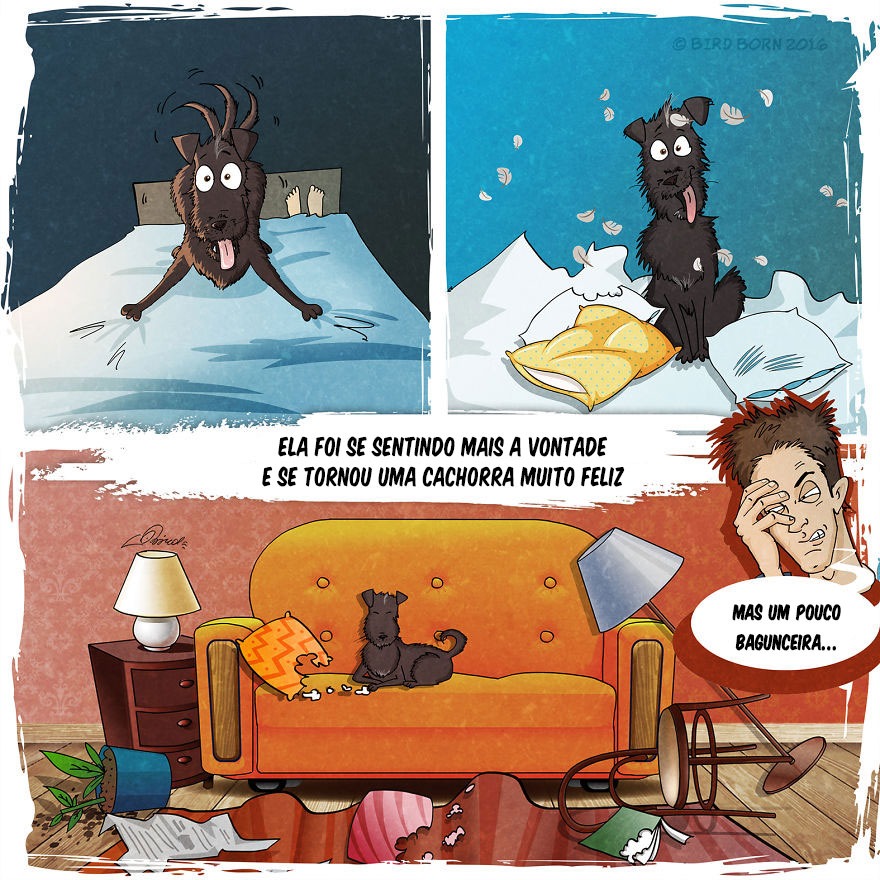 historia-de-cachorro-5