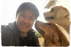 adestrador-inteligente-de-caes-cachorros-fotos-imagens