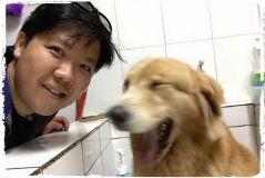 banho-tosa-caes-cachorros-sumare-sumarezinho-vila-madalena