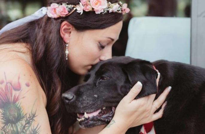 cachorro-casamento-tumor-cerebral