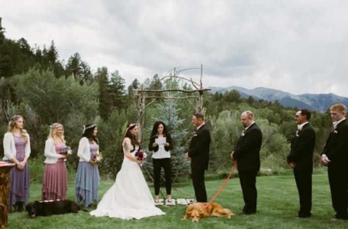 casamento-cachorro-fotos-imagens