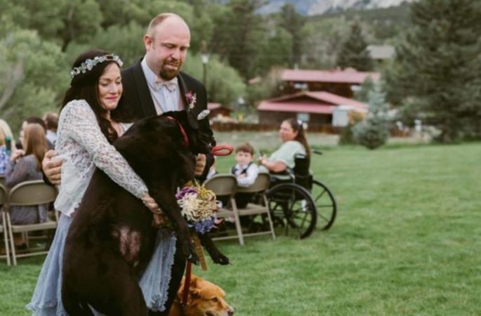 casamento-charlie-bear-casamento-dona