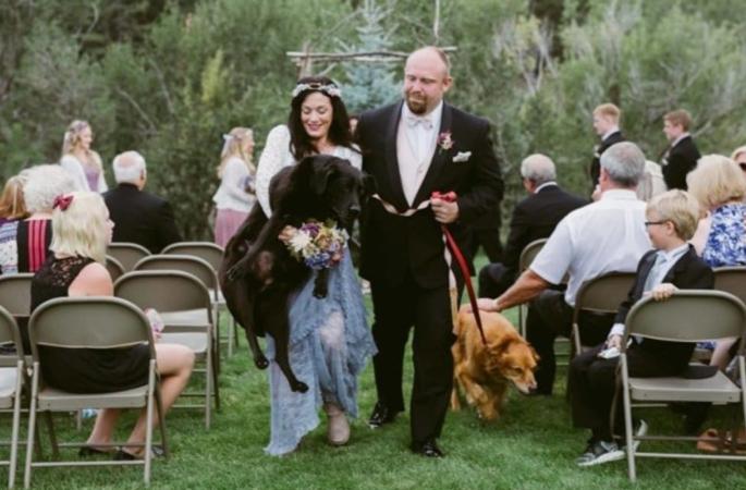 historias-emocionantes-tristes-cachorros-imagens
