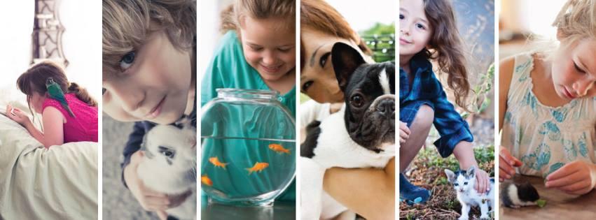 pet-shop-chic-dog-fotos-imagens
